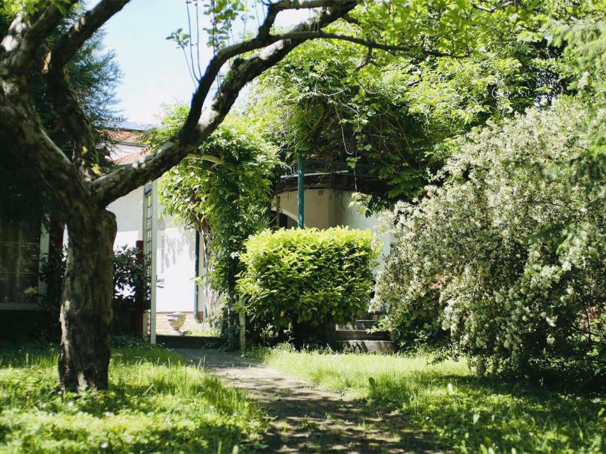 Novouređena unikatna kuća sa prekrasnim vrtom, bazenom i saunom